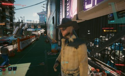 Cyberpunk 2077 bug example